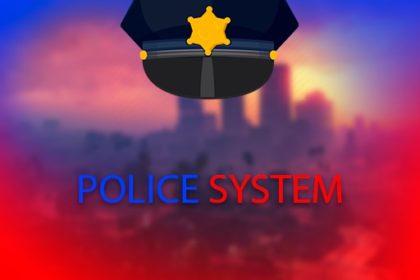 Система полиции